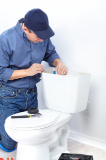 Mitch is fixing a toilet leak